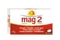 MAG 2 100 mg Comprimés B/60 à  VIERZON