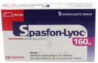 SPASFON LYOC 160 mg, lyophilisat oral à  VIERZON