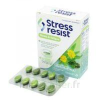 Stress Resist Comprimés Stress & fatigue B/30 à  VIERZON