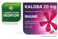 KALOBA 20 mg Cpr pell Plq/21 à  VIERZON
