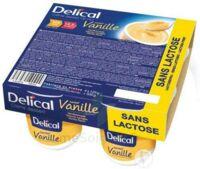 Delical Creme Dessert Hp Hc Sans Lactose, Pot 200 G X 4 à  VIERZON