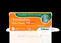 Trimebutine Mylan Conseil 100 Mg, Comprimé à  VIERZON