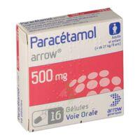 Paracetamol Arrow 500 Mg, Plq/16 à VIERZON