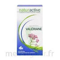 ELUSANES VALERIANE 200 mg, gélule Pilul/30 à  VIERZON