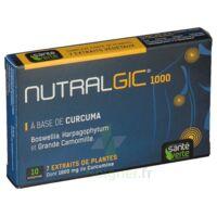 Nutralgic Comprimés inflammations B/10 à  VIERZON