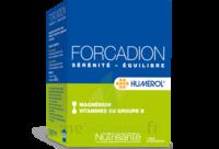 Forcadion Gélules anti-stress B/120 à  VIERZON