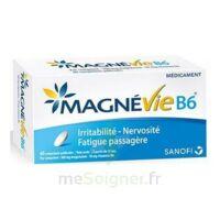 Magnevie B6 100 mg/10 mg Comprimés pelliculés Plaq/60 à  VIERZON