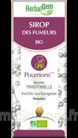 Herbalgem Sirop Bio Des Fumeurs 150ml à  VIERZON