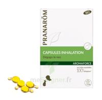 Aromaforce Caps Inhalation Bio B/15 à VIERZON