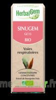 Herbalgem Sinugem Solution Buvable Bio Spray/15ml à  VIERZON