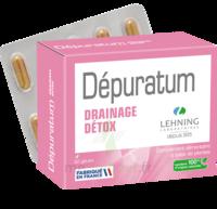 Lehning Dépuratum Gélules Drainage Détox B/60 à  VIERZON