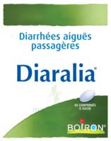 Boiron Diaralia Comprimés à  VIERZON