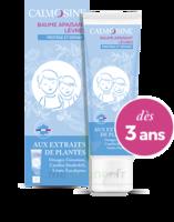 Calmosine Baume à Lèvres Extraits Naturels De Plantes T/20ml à VIERZON