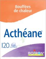 Boiron Acthéane Comprimés B/120 à  VIERZON